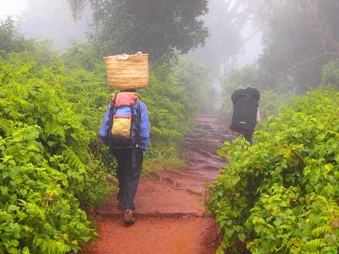 Kilimanjaro_2nd_1.jpg