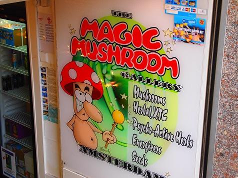 MAGIC MASHROOM.jpg