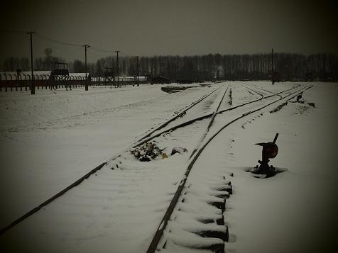 ビルケナウの線路の上に....jpg