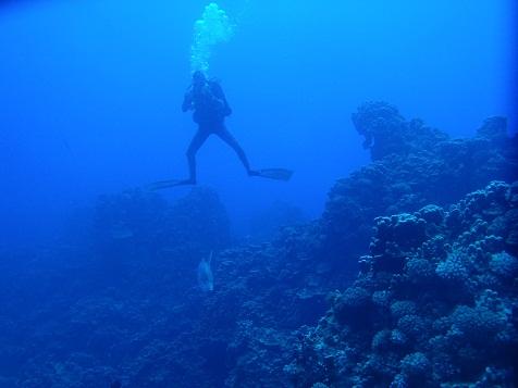 潜水をしていくと....jpg