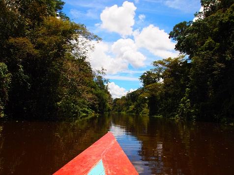 アマゾン川上流.jpg