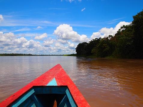 アマゾン川下流.jpg