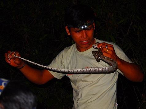 毒蛇確保.jpg
