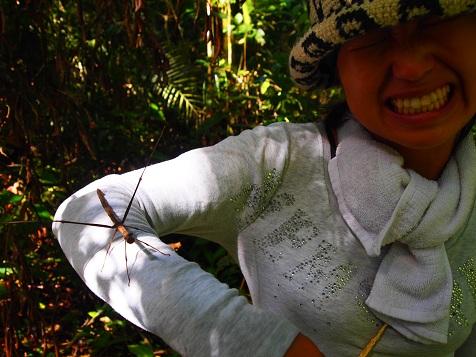 Nature Walk5.jpg