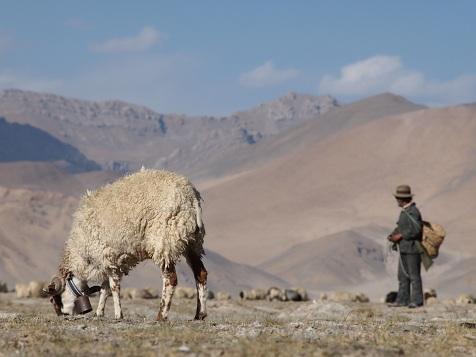 チベット2.jpg