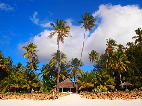 Beach Paradice.jpg